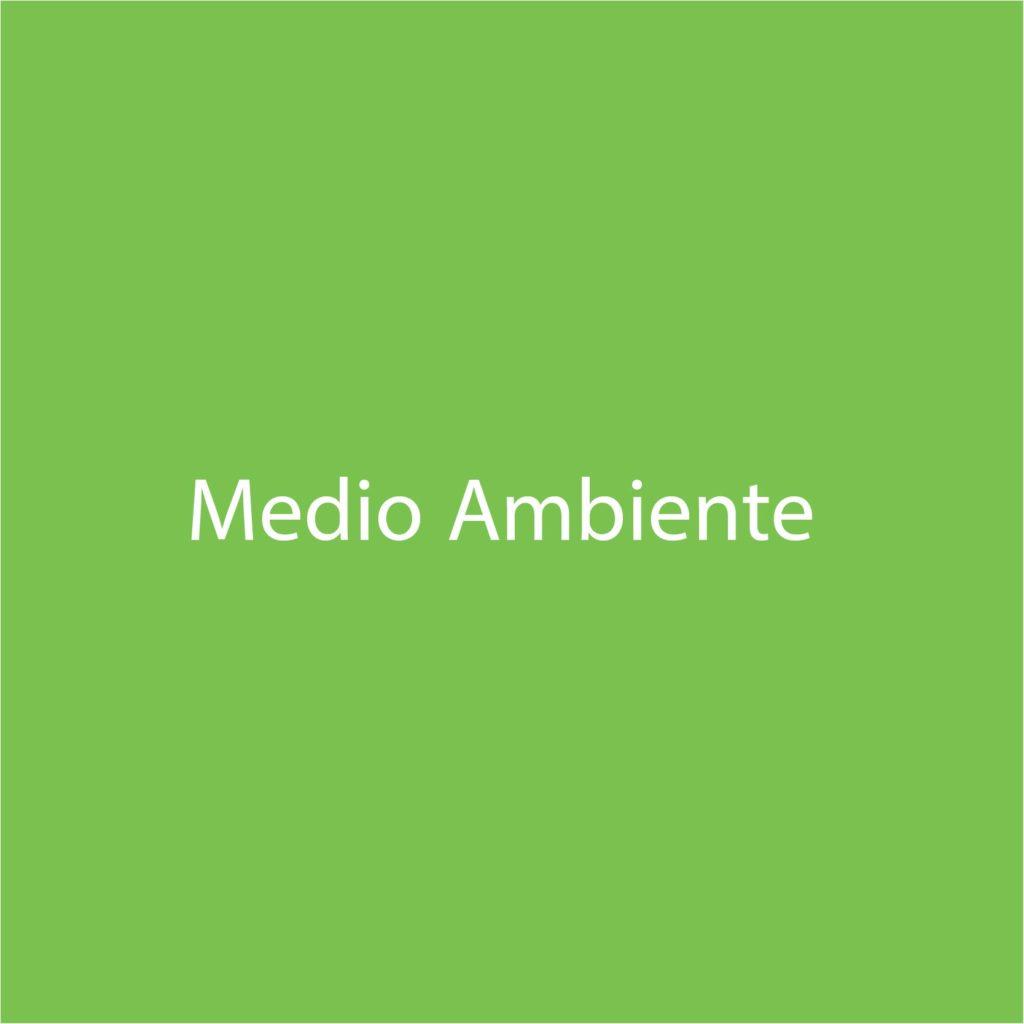 letra medio ambiente verde