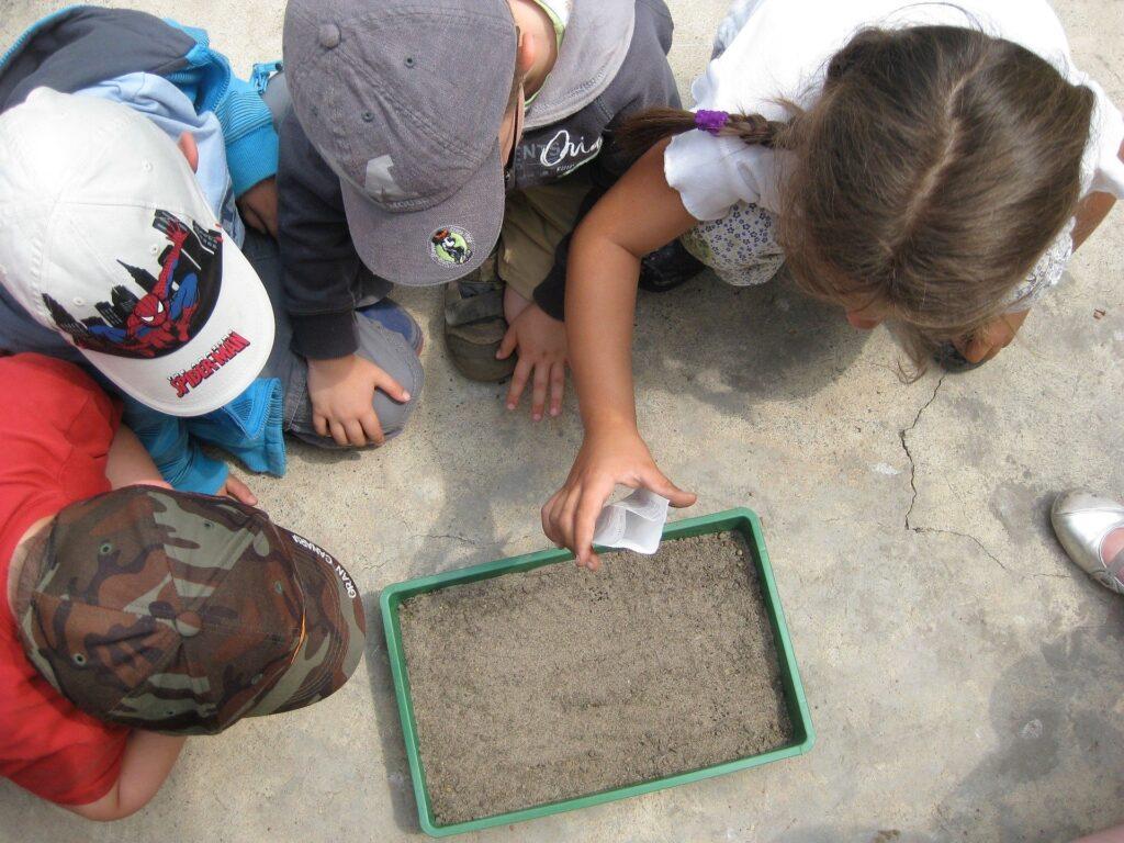 Niños sembrando semillas